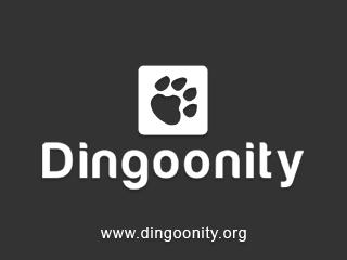20091112 dingoonity fw v1.2 for dingoo a320 (dingoo os) Dingoonity FW v1.2 for Dingoo A320 (Dingoo OS)